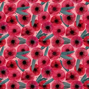 abstract eucalyptus flower