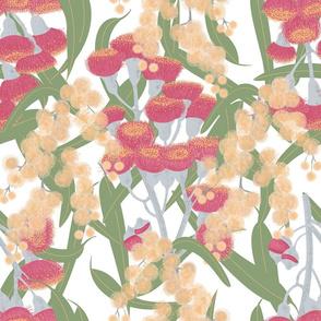 Eucalyptus and Wattle Blossom Light