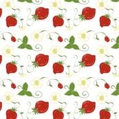 Strawberry and Blossom