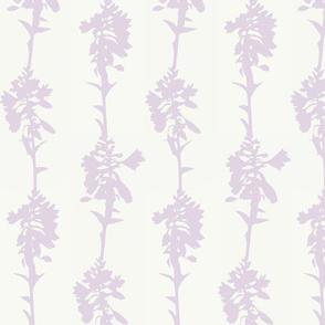 Hosta Stripe lilac on cream