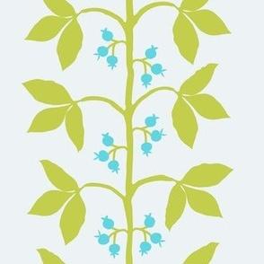 Berry Vine Stripe Citron  Aqua