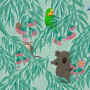 Eucalyptus and Friends