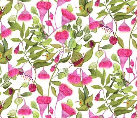 Rrrreucalyptus_flowers_contest252494preview