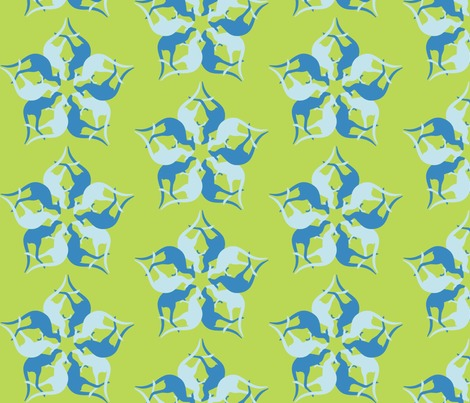 R5-petal-kangaroo-flower-with-background-touching_contest252478preview