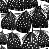 Guinea Fowl Feathers black and white mix