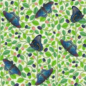 Butterflies and Blackberries-Large