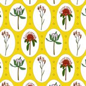 Australian Flowers SS