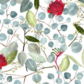 Floral green red watercolor Eucalyptus Leaves Kangaroo Paw Waratah