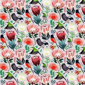 Sunbirds & Proteas On Grey (Small Version)
