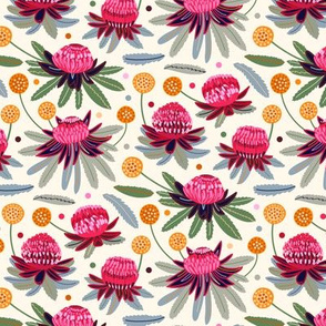 Waratahs & Craspedia (Cream) (Small Version)