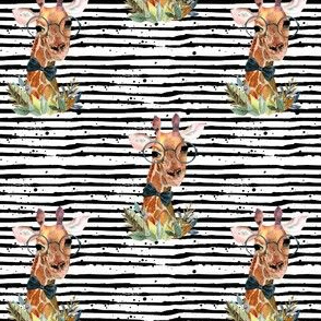 "4"" Boy Giraffe Black Stripes"