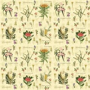 Australian Flora Yellow sm