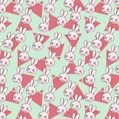 Crazy Spring Rabbit