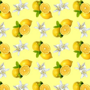 Lemon Fruit and Flowers Pattern