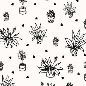 Home plant doodles