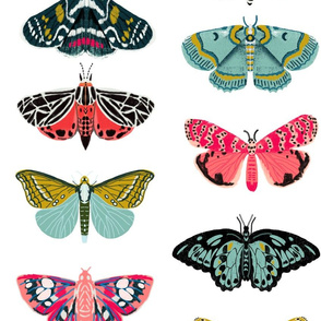 EXTRA LARGE - moths and butterflies cute girly pastel insect butterfly spring garden
