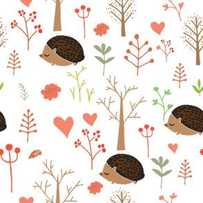 Little hedgehog-01