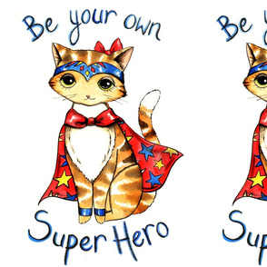 Super Hero Cat