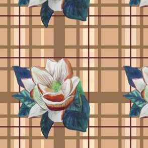 Memento magnolia 8