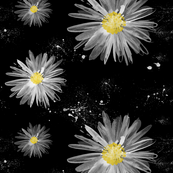 watercolor night daisy garden
