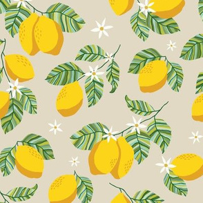 Squueze the Day Lemons Natur