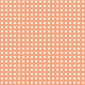 Coral_Checkers_Stock