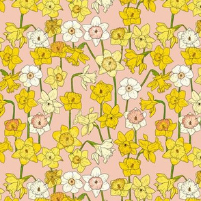 Small Daffodil Illustration on Pink