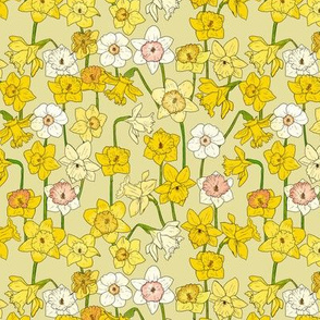 Small Daffodil Illustration on Yellow