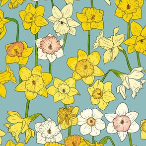Medium Daffodil Illustration on Blue