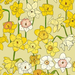 Medium Daffodil Illustration on Yellow