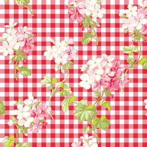 Everafter strawberry gingham