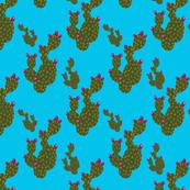 Prickly Pear Sky
