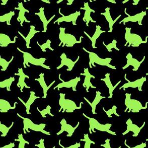 kitties warm-up lime 8x8