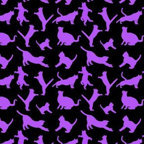 kitties warm-up purple 8x8