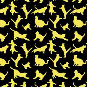 kitties warm-up yellow 8x8