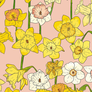 Large Scale Daffodils on Pink