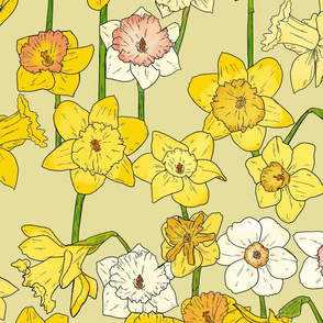 Large Scale Daffodils on Yellow
