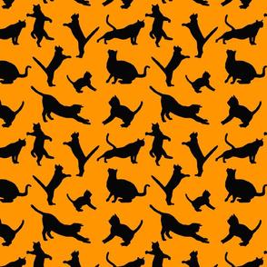 kitties warm-up black on orange 8x8