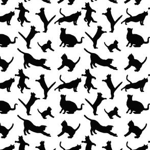 kitties warm-up black on white 8x8