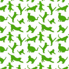 kitties warm-up green 8x8