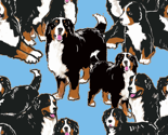 R5086211_rrr1684612_r1684612_rbernese_seamless_group_onesmall-size_thumb