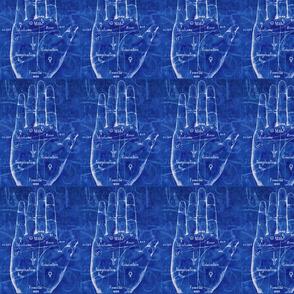 Palm Blueprint