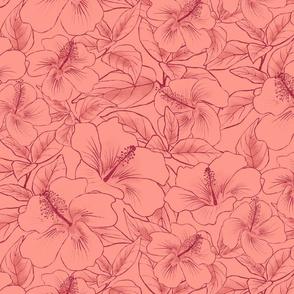 Hibiscus Sketch Pinot Noir on White Zin 250