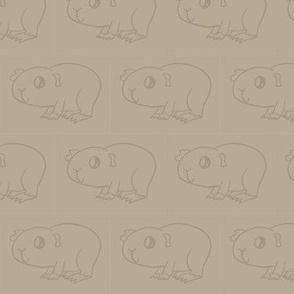 Beige Guinea Pig