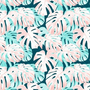 (small scale) Monstera deliciosa  - Swiss cheese plant - pink and teal - LAD19