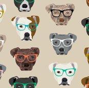 Rpitbull-heads-glasses-tan_shop_thumb