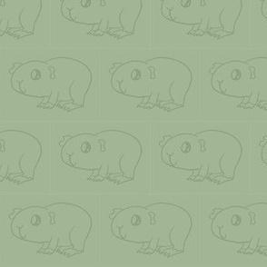 Guinea Pig Green