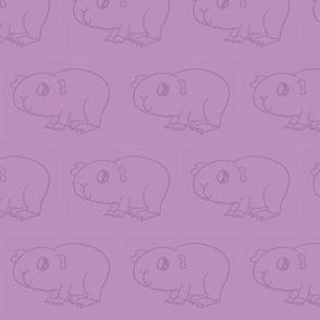 Guinea Pig Magenta