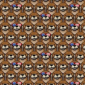 (small scale) patriotic otter C19BS