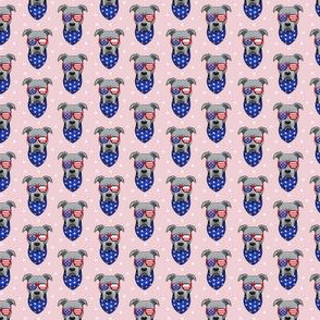 (micro scale) patriotic Pit Bull on pink C18BS